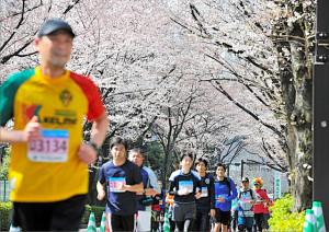 台風一過さんさようなら(≧∇≦)マラソンシーズンこんにちは(・∀・)ノ
